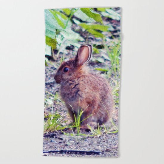 Easter Bunny perhaps Beach Towel
