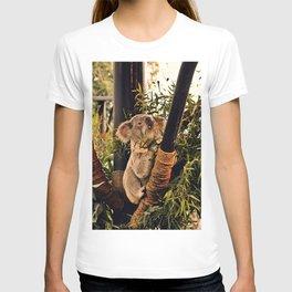Hungry Koala T-shirt