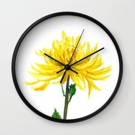 one yellow chrysanthemum Wall Clock