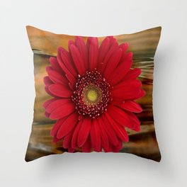 Red Daisy Abstract Throw Pillow