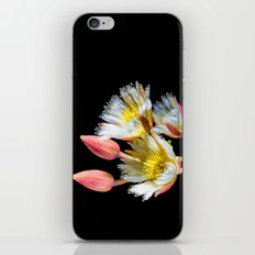 Bold and Wild Flowers iPhone & iPod Skin