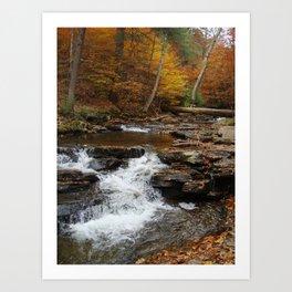 Small Fall Art Print
