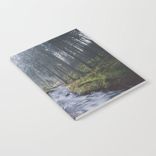 Damped feelings Notebook