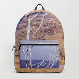 Great Plains Vista Backpack
