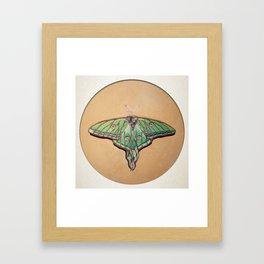Vitrail  Framed Art Print