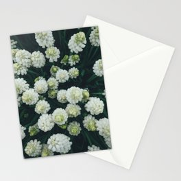 Spring Flowers From Above Stationery Cards