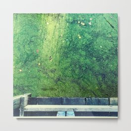 Swamp melancholy Metal Print