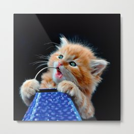 Orange Cat Cub Playing and Biting Blue Metal Print