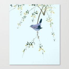 Chirpy Canvas Print