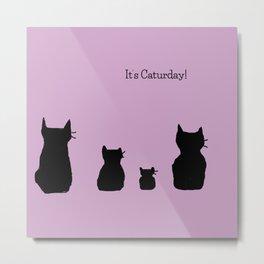 It's a cute Caturday ! Metal Print