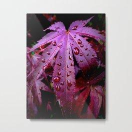 Lingering Rain Metal Print