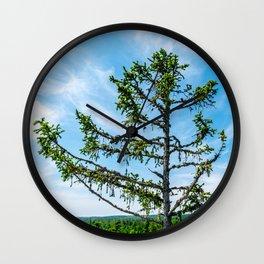 Conifer Tree Top Wall Clock