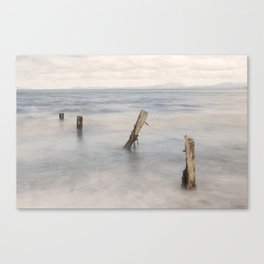 In Perfect Isolation Canvas Print