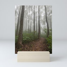 Smoky Mountain Summer Forest VIII - National Park Nature Photography Mini Art Print