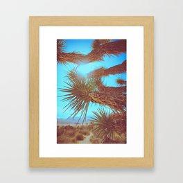 Joshua Tree Please Framed Art Print