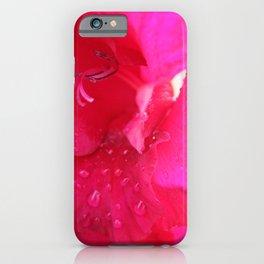 Flower I  Flower after rain I Hibiskus or Japanese rose I Photography  iPhone Case