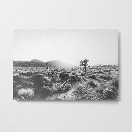 JOSHUA TREE X Metal Print