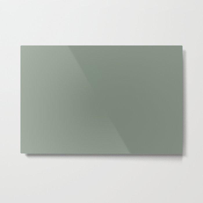Green Pantone #839182 Metal Print