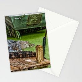 Resting Alligator Stationery Cards