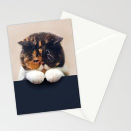 Desperate Cat Stationery Cards
