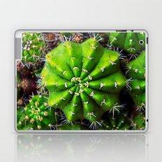 cactuses Laptop & iPad Skin