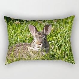 Young Cottontail Rabbit Rectangular Pillow