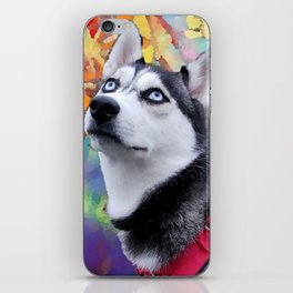 Dreaming Husky iPhone Skin