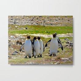 Marching King Penguins Metal Print