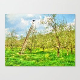 The Lone Crow Canvas Print