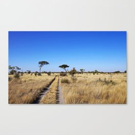 Path through Africa - Central Kalahari, Botswana Canvas Print