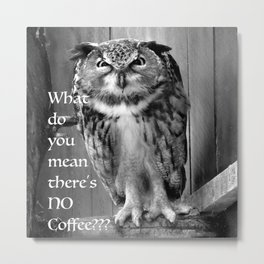 Angry Owl- What do you mean theres no more coffee? Metal Print