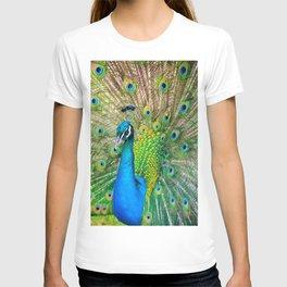 Beautiful Peacock (Color) T-shirt