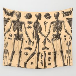 Vintage Human Skeleton Anatomy Diagram (1907) Wall Tapestry