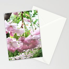 Beautiful Cherry Blossom Stationery Cards
