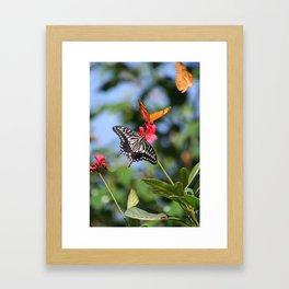BUTTERFLY FARM DUO Framed Art Print