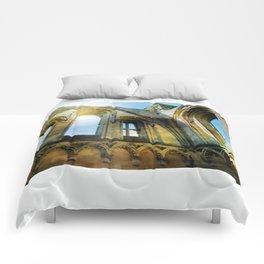 Glastonbury Abbey  Comforters