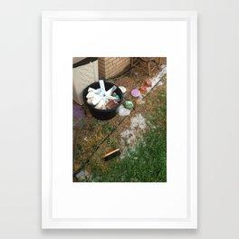 #36 Framed Art Print
