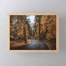 Autumn Forest Road II Framed Mini Art Print