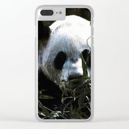 Chinese Giant Panda Bear Clear iPhone Case