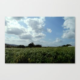 Endless fields, endless skies Canvas Print