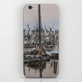 Flood Ruins - Epecuen iPhone Skin