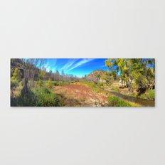 Gila Meadow Canvas Print