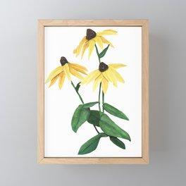 Black Eye Susan Flowers Framed Mini Art Print