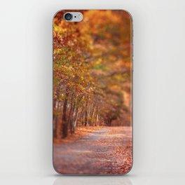 Autumn Walk iPhone Skin