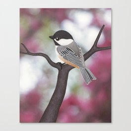 Wiley the black-capped chickadee Canvas Print