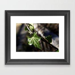 Little Emerald Framed Art Print