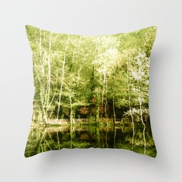 A house in the lake Throw Pillow