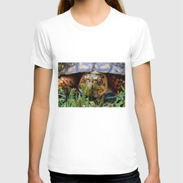 box turtle, face on T-shirt