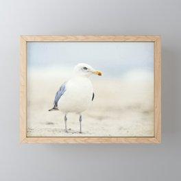 Seagull Beach Photography, Coastal Bird Jersey Shore Art, Blue White Seashore Birds Photo Framed Mini Art Print