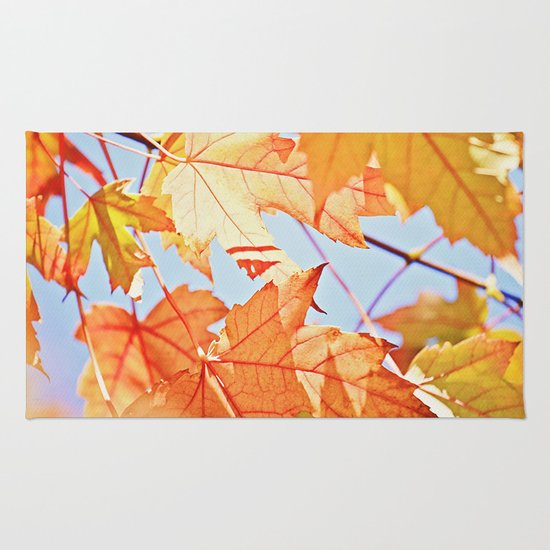 Fall Color Rug